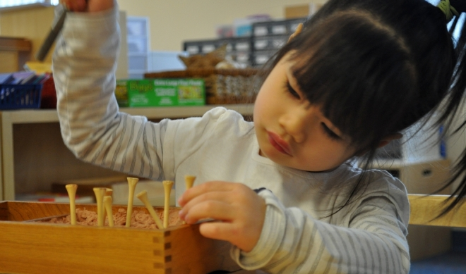Maria Motessori – 2 » Little Blossom Montessori